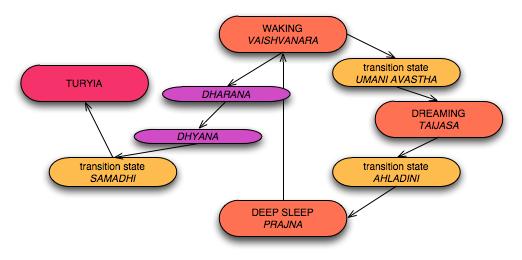 States-Diagram-Consciousness.png